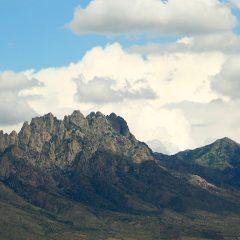 organic-mountains-smaller